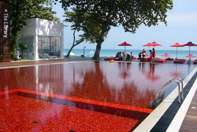 Những bể bơi hấp dẫn nhất thế giới